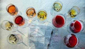 Características dos Vinhos